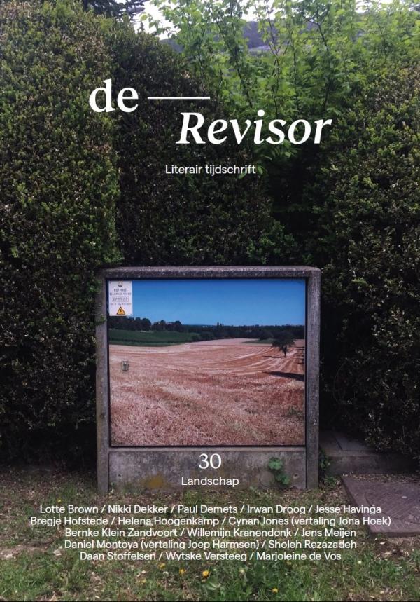 De Revisor 30. Landschap